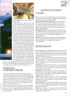 Living art Istanbul4 HBR oct. 2008-page-001
