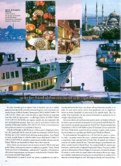 Living art3 Istanbul HBR oct. 2008-page-001